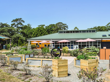 Virginia Zoo Receives Grant to Plant