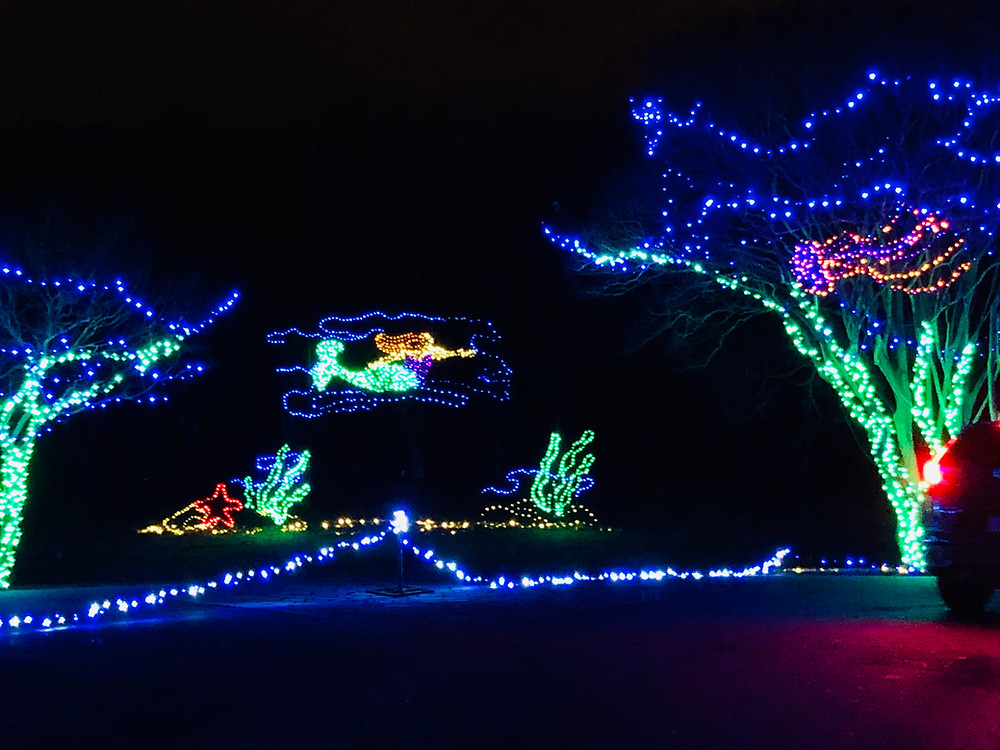 Under the sea scene in christmas lights complete with mermaid.