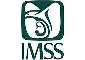 IMSS.jfif