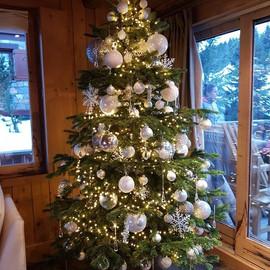 Sapin de Noël blanc