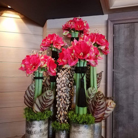 Arrangement floral - Amaryllis