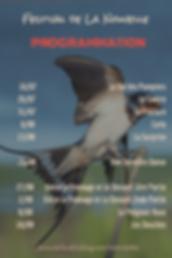 Affiche du Festival Virtuel de La Nouvelle 2016