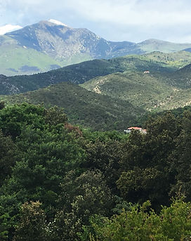 View La Fôret.JPG