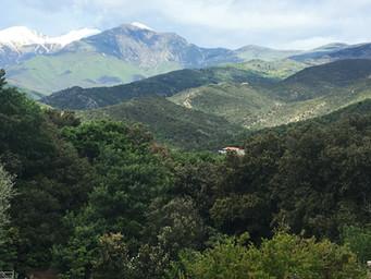 View La Fôret
