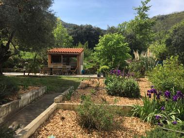 Jardin avec bar extérieur et piscine