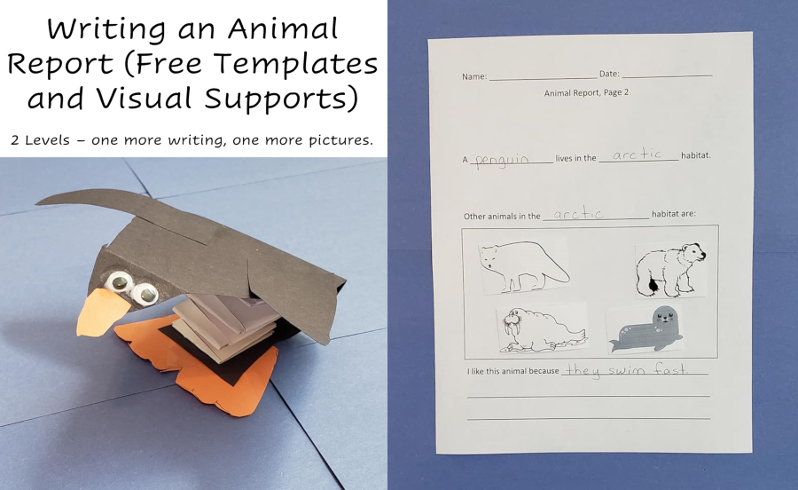 A photo of a completed report next to a paper craft of a penguin.