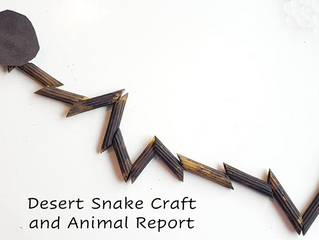 Desert Animal Report and Craft