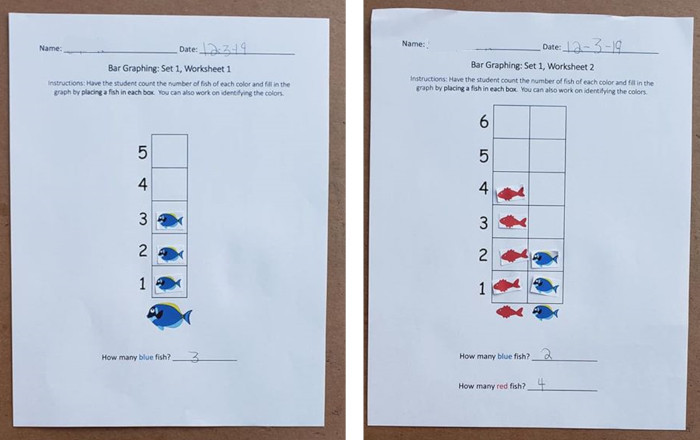 A photo of two completed bar graphing worksheets.
