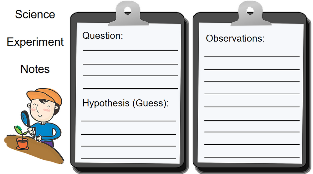 A screenshot of the science experiment notes Google Slide. It has a clip art image of a child looking at a plant with a magnifying glass. It also includes an image of a clip board with sections for question, hypothesis, and observations.