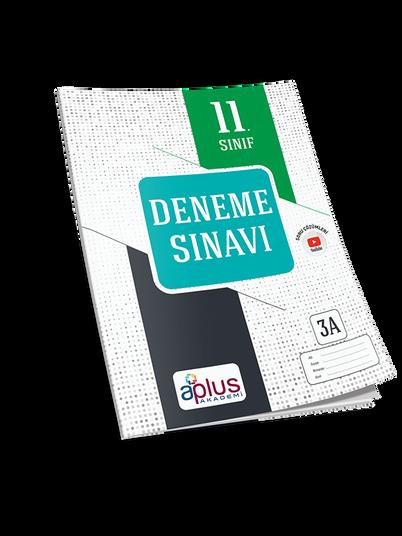 apa_11._sınıf_kd_turkuaz_copy.png
