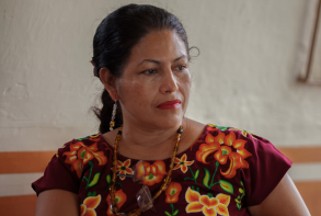 Help protect Mexican human rights defenders