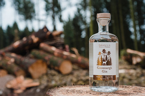 goosnargh-gin-signature-in-forest_1.jpg