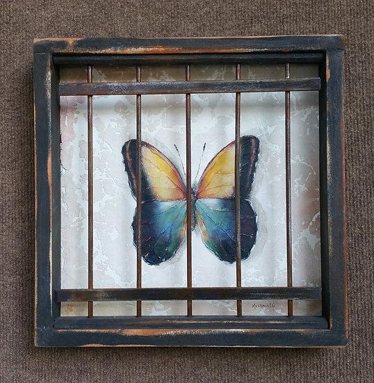 Captive Butterfly (C-15)