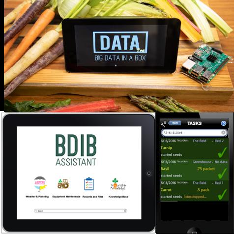 BDIB Products