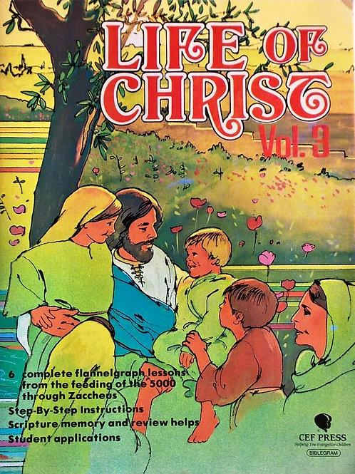 Życie Jezusa cz 3 flanelograf bez tekstu