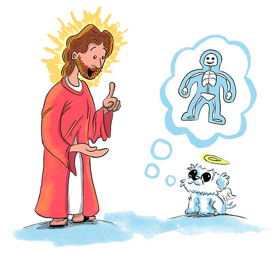 Jesus teach transparent.png