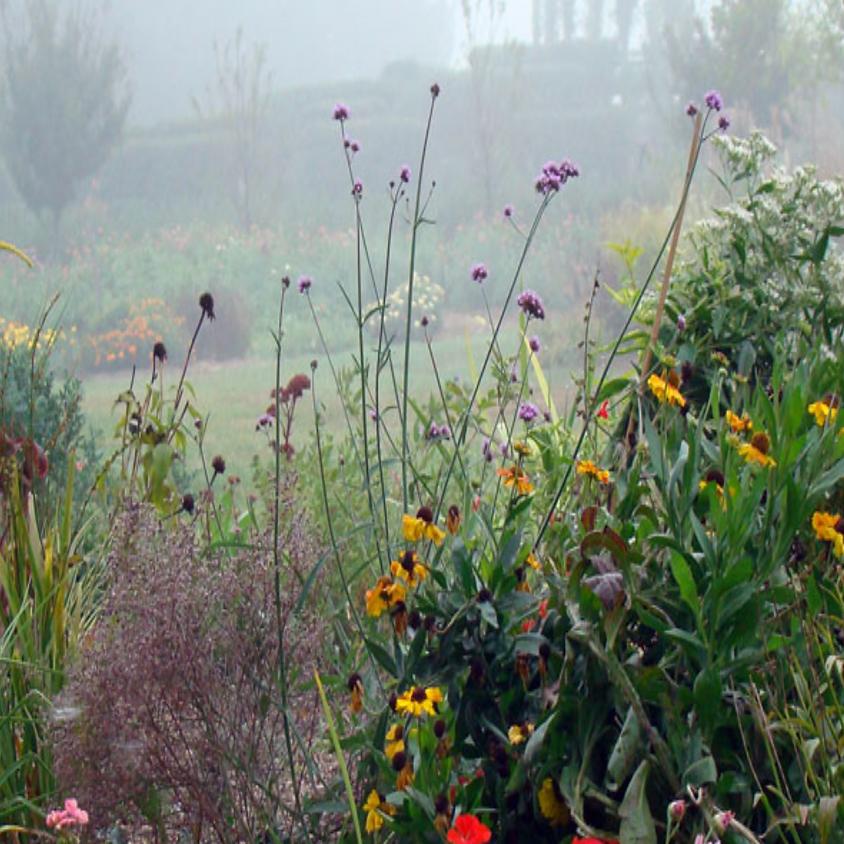 Visiting Gardens Trip to Paxson Hill Farm