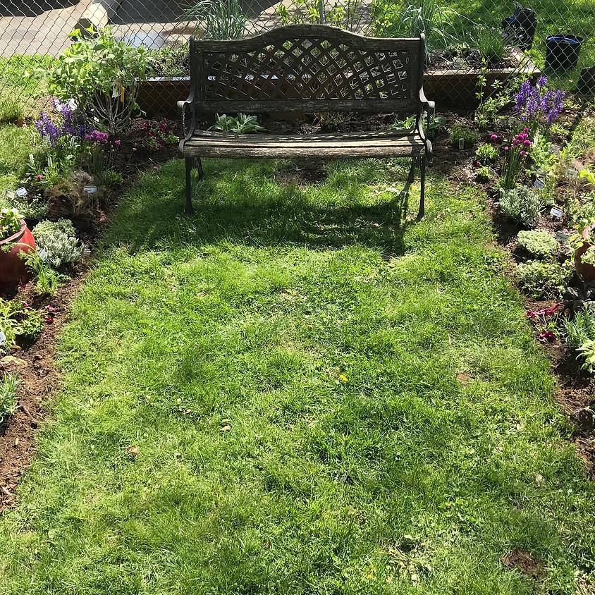 Horticulture & Civics Project - Womanspace Garden
