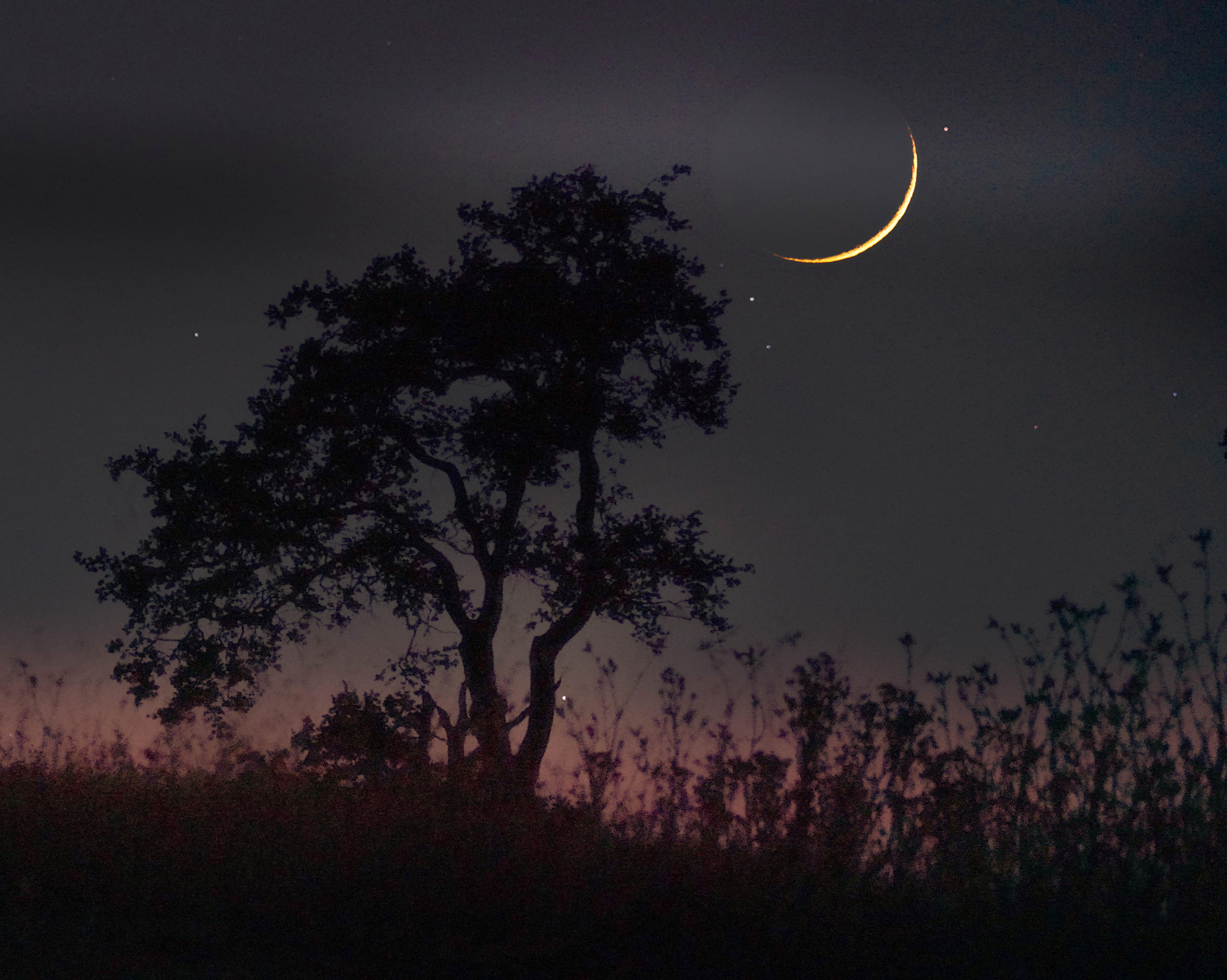 New Crescent Moon
