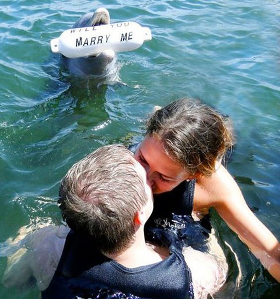 Proposta matrimonio subacquea