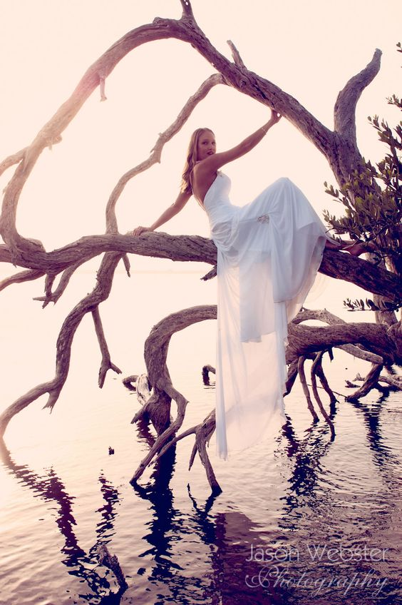 Trash the dress: sposa posa seduta su un ramo d'albero