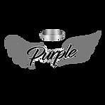 PURPangls_edited.png