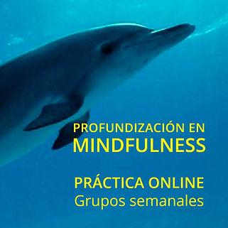 profundización_práctica_online.jpg
