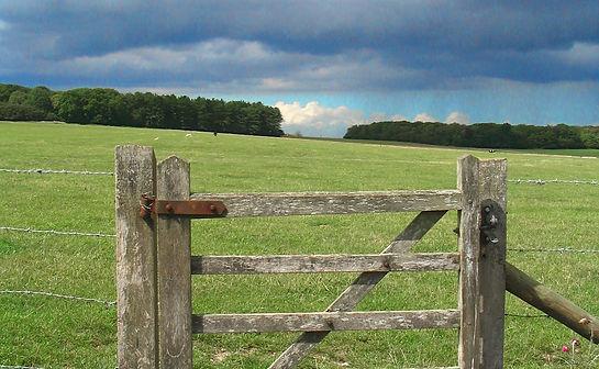 puerta de madera.jpg