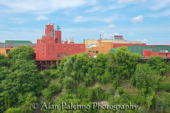 Color Palette Factory