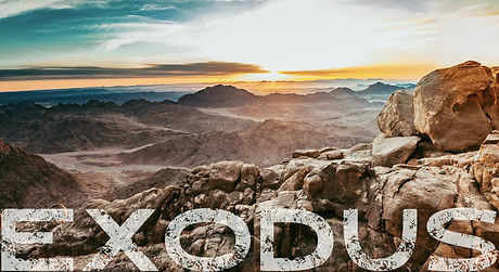 Exodus%20wilderness_edited.jpg