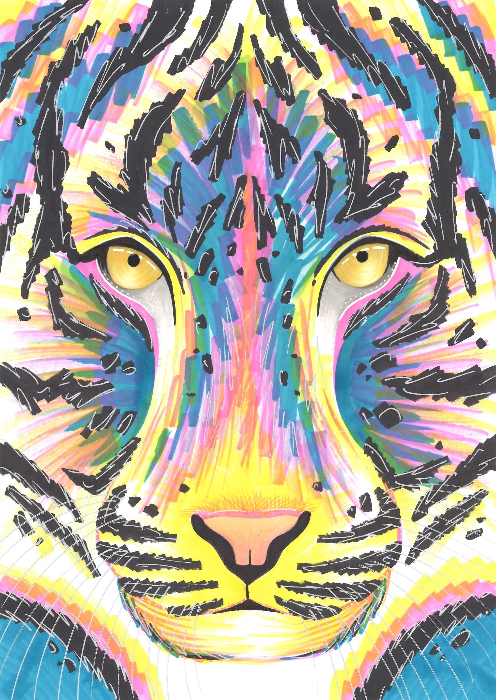 TIGER FULL SHEET.jpg