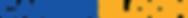 Career Bloom logo.png
