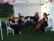 Arioso Strings Minneapolis String Quartet