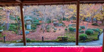圓光寺十牛の庭/ Enkoji