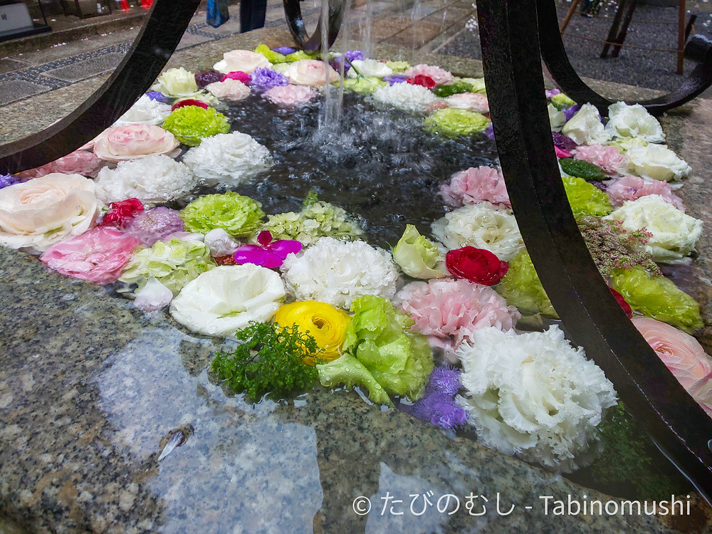 花手水 / wash basin with flowers