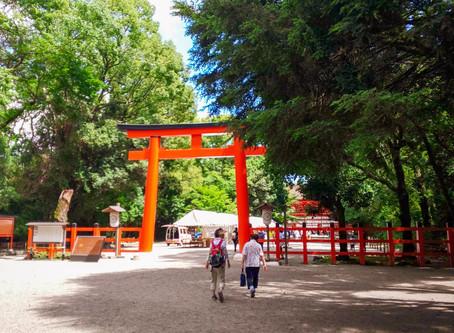 みたらし祭を体験!/Experience on Mitarashi Matsuri