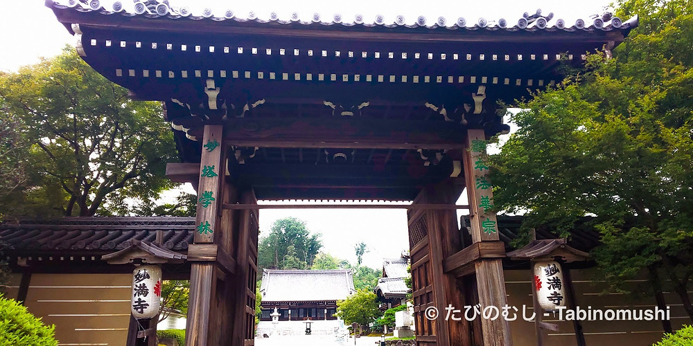 妙満寺山門/ gate at Myomanji