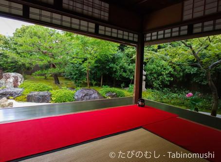 お庭が新しくなった霊源院/Reigenin With A Renewed Garden
