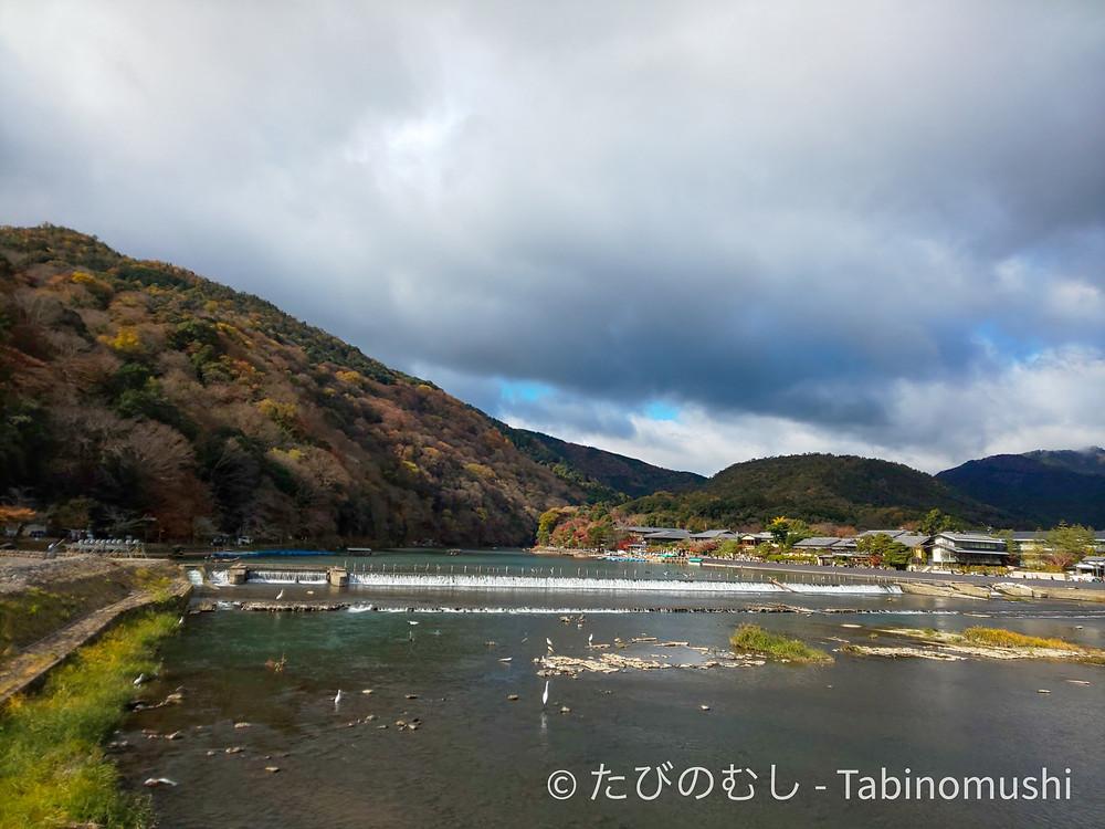 嵐山 / Arashiyama
