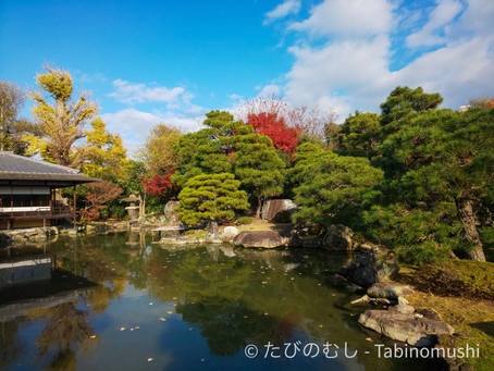 渉成園の名残の紅葉/The Last Moment of Autumn colors at Shosei-en Garden