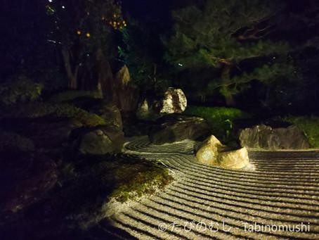 霊源院の限定ライトアップ/Illumination at Reigenin Temple