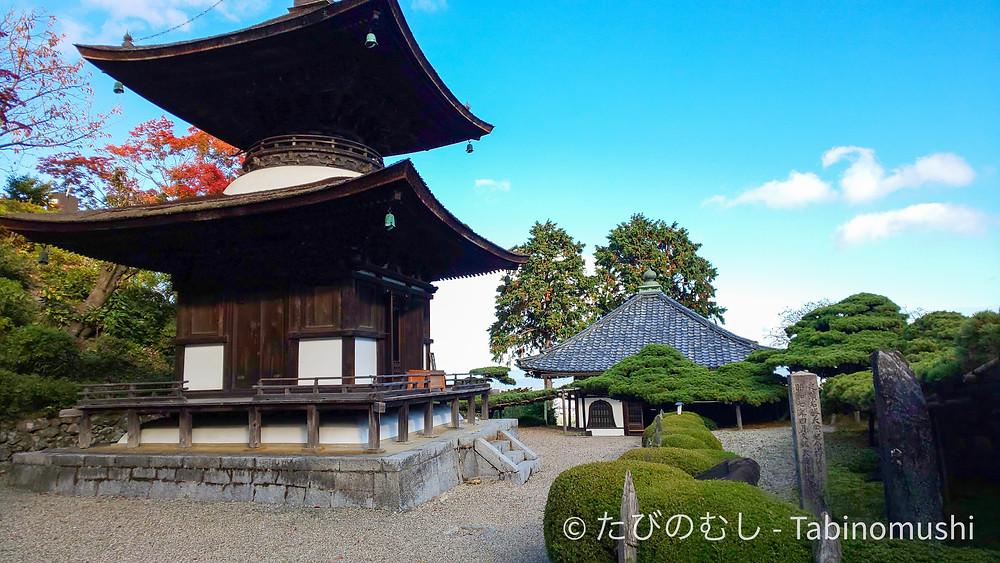 善峯寺 遊龍松 / Yoshiminedera pine tree