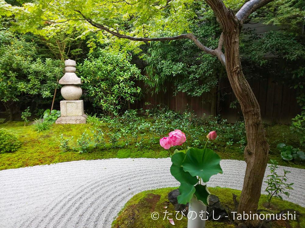 建仁寺霊源院/Reigenin at Kenninji Temple