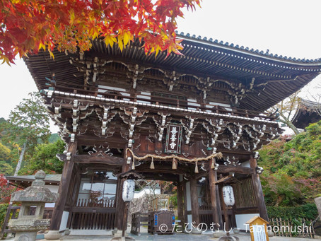 善峯寺訪問記①/Visit Report on Yoshiminedera Temple①