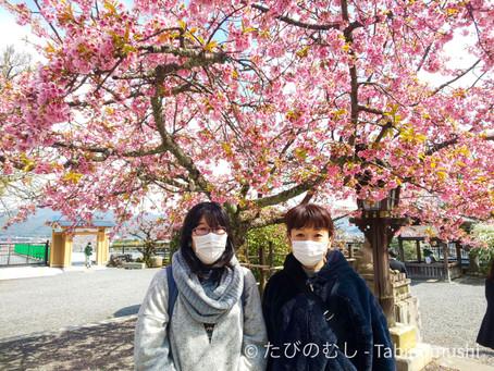 春の嵐山散策/Spring Arashiyama Walk