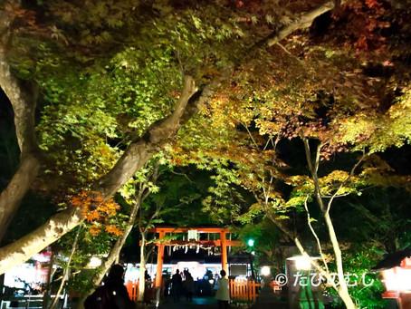 大原野神社のライトアップ/light-up at Oharano-jinja Shrine