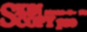 skinscopy_logo2.png