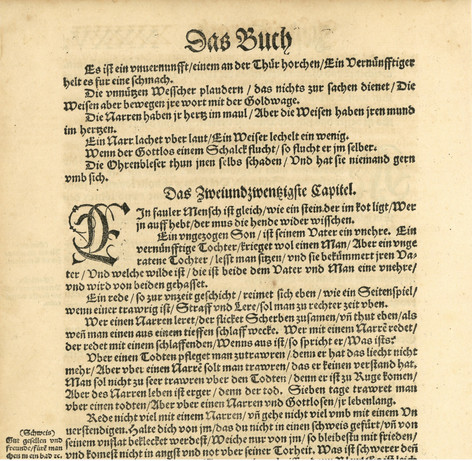 Suppressed Luther Bible - 1541