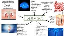 Leaky Gut outcomes.jpg