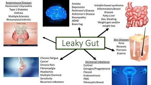Leaky Gut outcomes.jpg